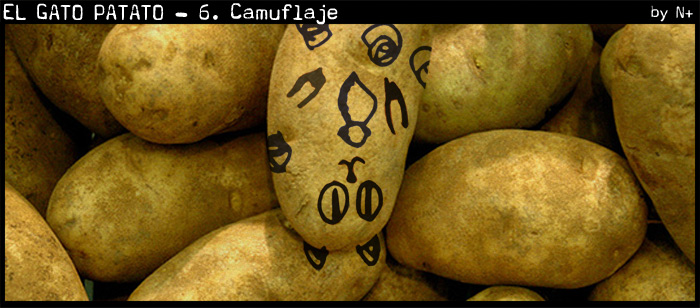 patato-006