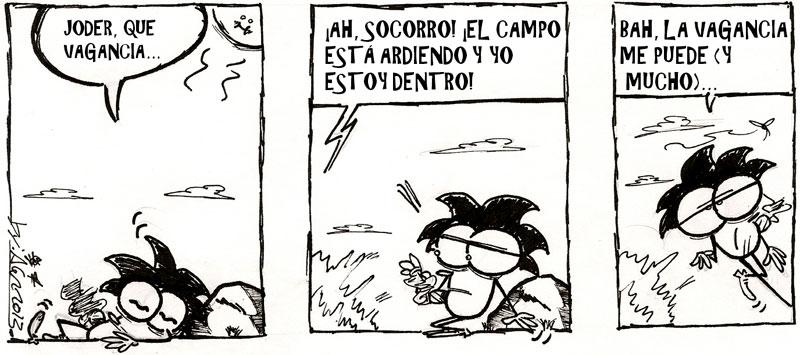 bonifacio-34_c_1-800